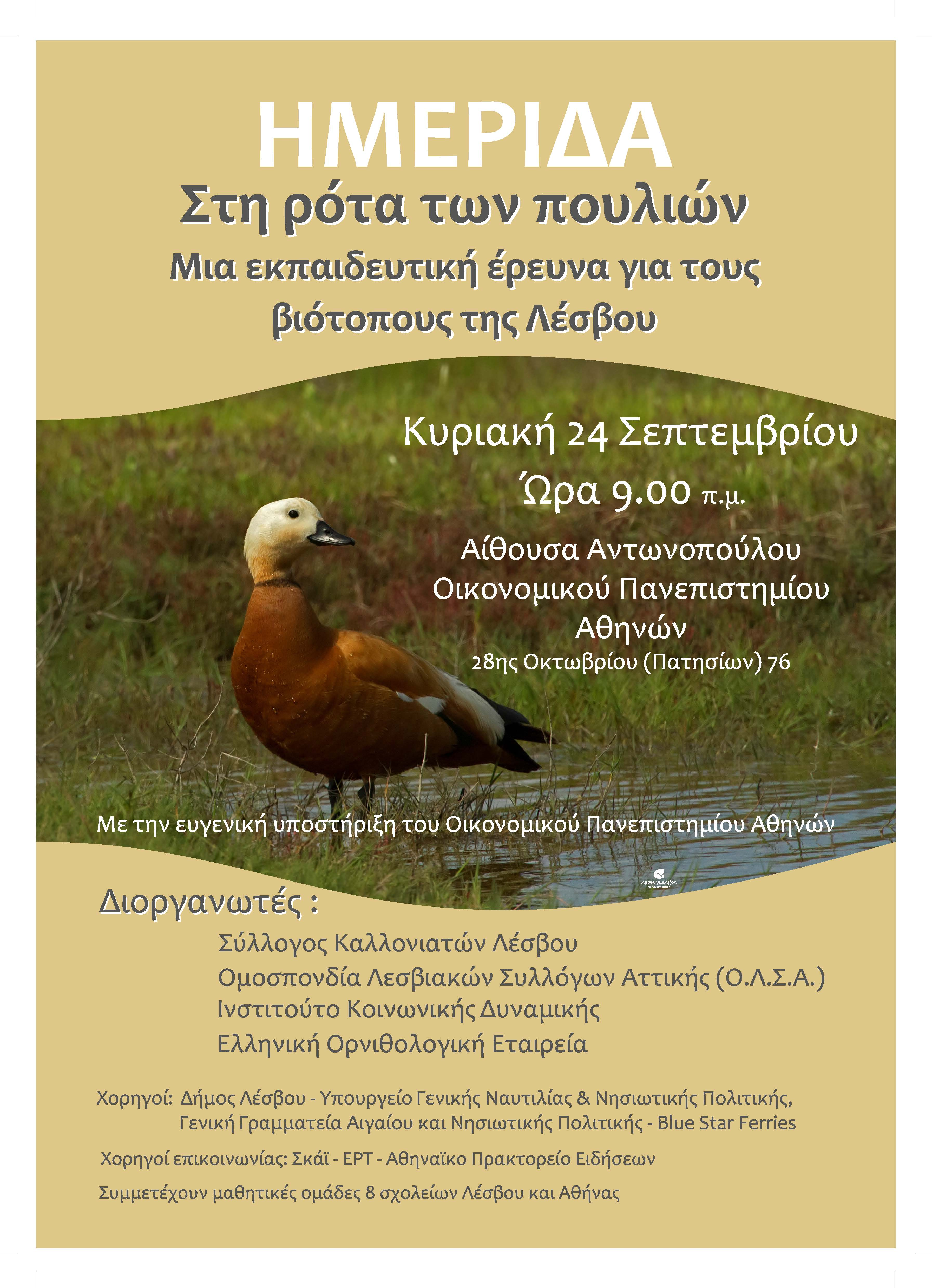 ROTA poster